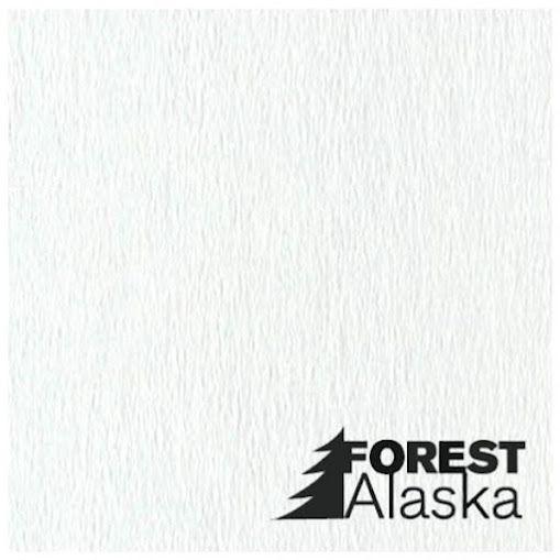 Декоративные панели для потолка Alaska