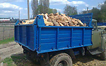 Купити дрова в Луцьку