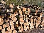 Придбайте метрові дрова за ціною виробника Луцьк Ківерці Рожище